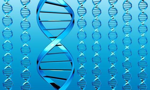 """A """"bűnös"""" DNS."""